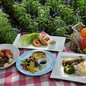 piknik-drive-appetite